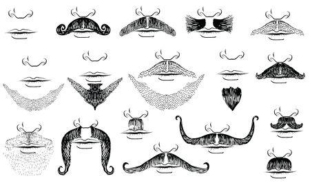bigote: Bigotes para el hombre.Colecci�n de vector en blanco para el dise�o Vectores