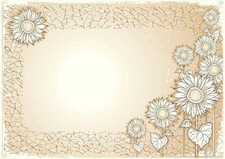 Sunflower .Vector vintage postcard with grunge elements  Vector