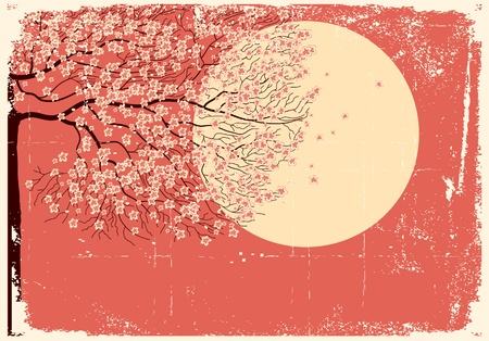 old moon: Illustration of sakura branches beautiful background on old paper texture