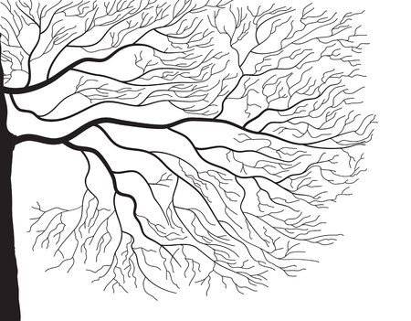 black graphic silhouette of tree branches on white Иллюстрация