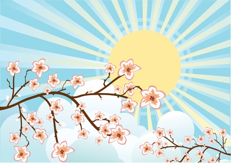 Illustration of sakura branches Vector
