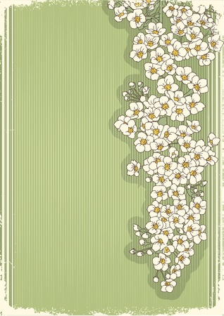 Vintage flowers postcard for text.Vector floral background with grunge elements Stock Vector - 10101342
