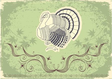 Thanksgiving decoration postcard.Grunge background with turkey. Stock Vector - 10421321
