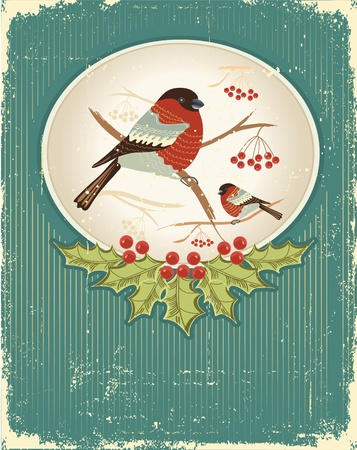 bullfinches in winter.Vintage christmas card for text Stock Vector - 10853681
