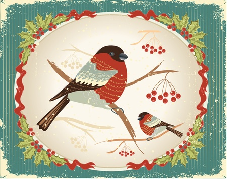 oiseau dessin: bullfinches en hiver.Carte de Noël vintage avec cadre de baies de houx pour le texte