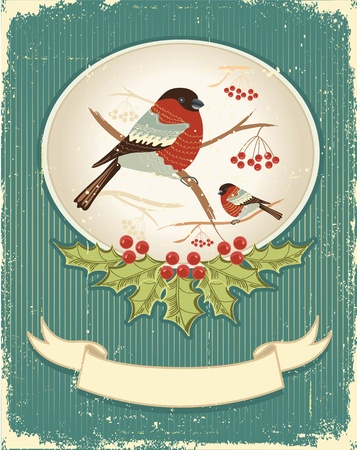 finch: bullfinches in winter.Vintage christmas card for text Illustration