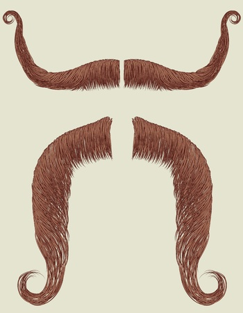 Mustaches set for man.Vector collection fake for design Vector