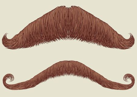 mustaches: Mustaches set for man.Vector collection fake for design