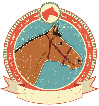 Horse head label on old paper texture.Vintage style Vector