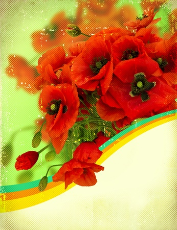 Poppy flowers on retro paper texture.Card for text photo