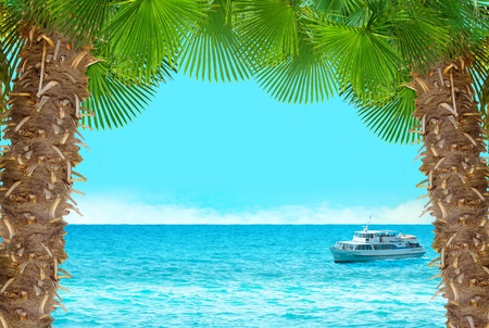 caribbean cruise: Tropical collage with cruise ship.Seascape background with palms and blue sky