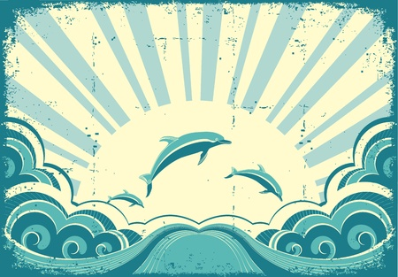 dolphin: Blue dolphins jumping in sea in summer day.Grunge image