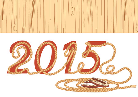 lasso: cowboy lasso 2015.Vector illustration for New Year on white Illustration