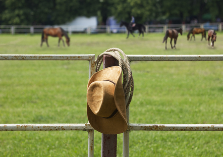 vaquero: Sombrero de vaquero y la cuerda en la cerca del rancho caballo americano Foto de archivo