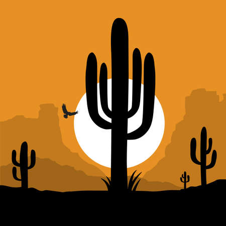 American Desert with cactuses silhouette illustration. Vector American sunset Arizona desert