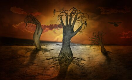end of world: creepy looking trees