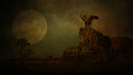 Elephant in moonlight  photo