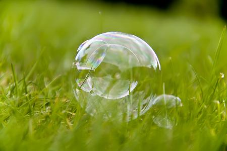 Soap bubble on the grass in close Stock Photo - 23215036