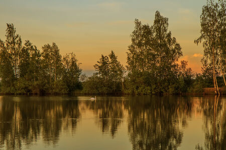 gold color: Lake gold color Stock Photo