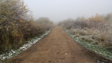 rime frost: road in yellow