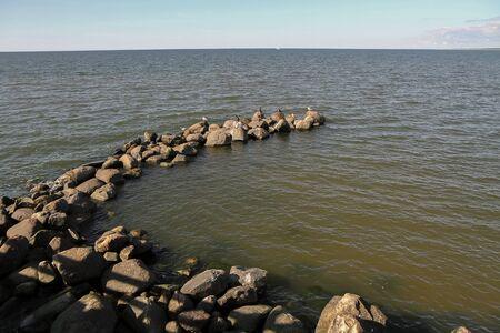 uninhabited: many stones in sea Stock Photo