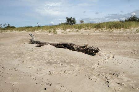 uninhabited: found on the sand
