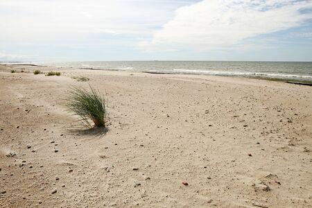 uninhabited: Sand Stock Photo