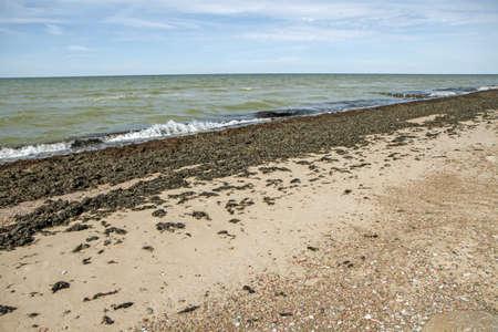 uninhabited: sea in summer