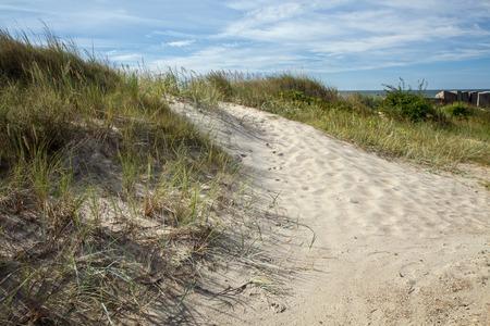 uninhabited: grass on the sand