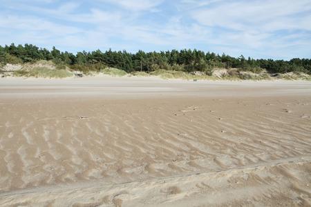 baltic sea: Baltic sea coast near the city of Palanga in Lithuania