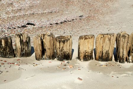 uninhabited: Wood on sand Stock Photo