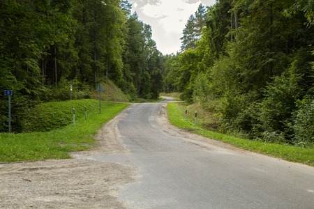 The road passing through a large forest