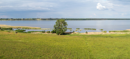 cow pasture: meadow to the lake for cow pasture