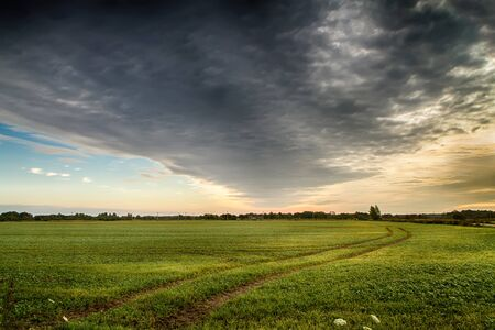mounds: fields in the evening