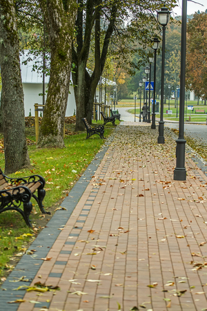 avenue: Benches near Avenue