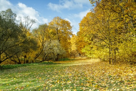 end of the days: When it comes to autumn Stock Photo