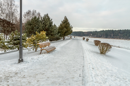 walking trail: The walking trail in winter Stock Photo