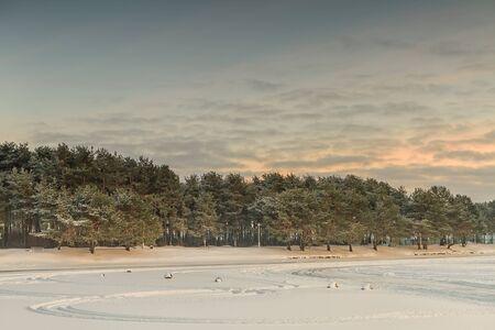 kaunas: Frozen Lagoon in winter