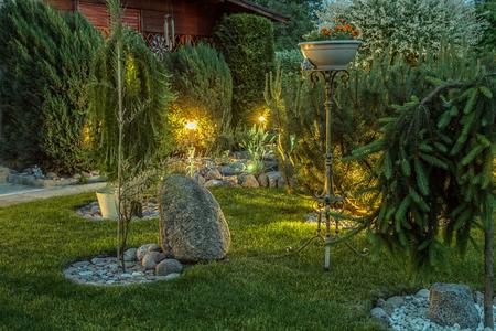 Pflanzen im Garten Standard-Bild - 60248651