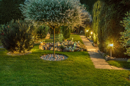 Lights in nice garden