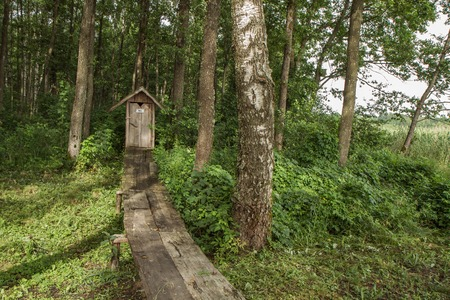Wooden trail to the forest Banco de Imagens