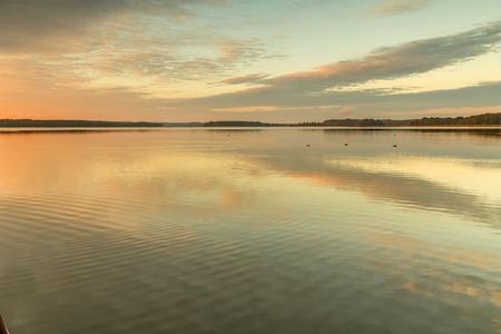 canne: Canne nel lago Archivio Fotografico