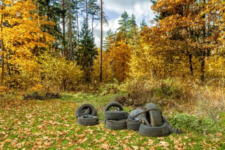 Tires dropped in a beautiful autumn forest.This pollutes nature. Standard-Bild
