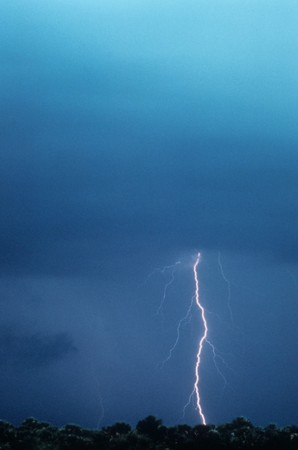 Lightning is striking the ground behind a row of trees during a lightening storm. Vertical shot. Stock Photo