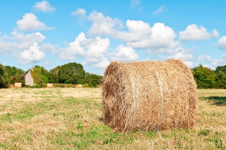 hayloft: hay roll on farmland in france