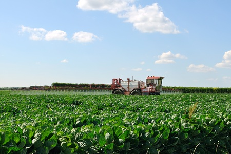 agronomic: Tractor spraying crops