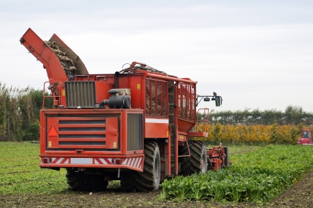 Tractor harvesting crops  photo