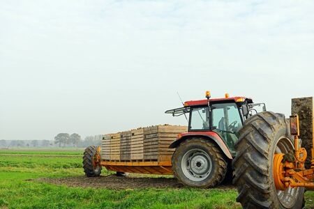 unwashed: tractor with harvest of carrots on farmland Stock Photo