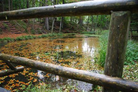 hojas: Baranda de troncos sobre pequeño lago en el bosque.