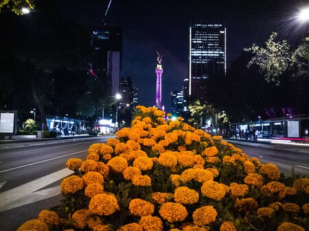 Day of the Dead - Mexico City